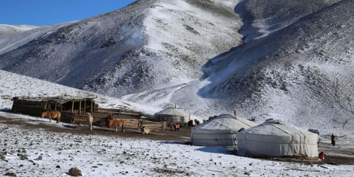 Snowy Mongolia - The Pavilions Mongolia