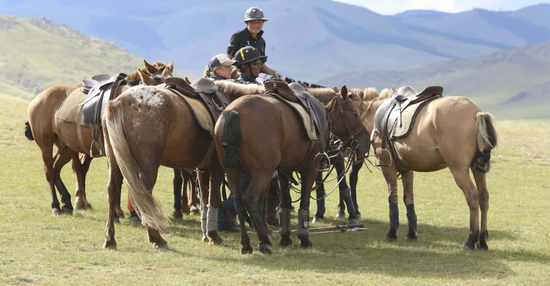HORSE RIDING - The Pavilions Mongolia
