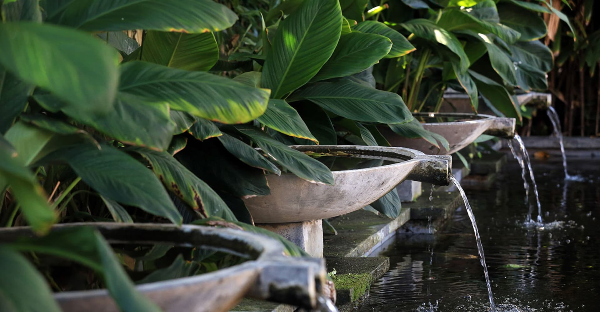 TRAVEL AGENTS HUB - The Pavilions Phuket