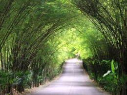 ABOUT - The Pavilions Residences - Phuket