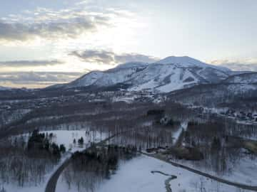 Niseko Market Update, What's New?