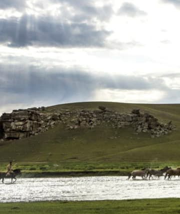 RIDING - The Pavilions Mongolia