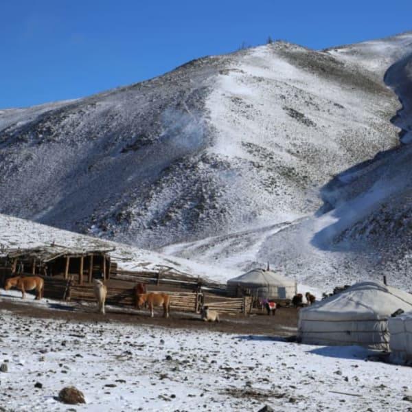 Snowy Mongolia